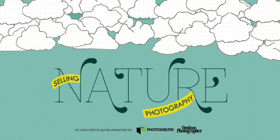 Selling Nature Photography