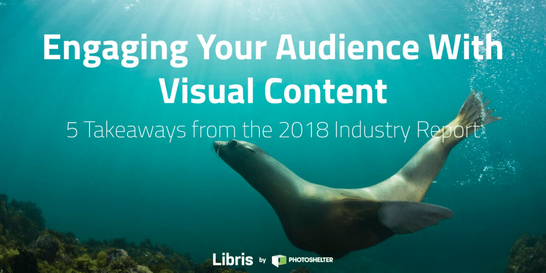 5 Takeaways from the 2018 Visual Content Report